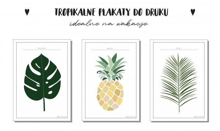 Tropikalne Plakaty Do Druku Archistacjapl Na Stylowipl