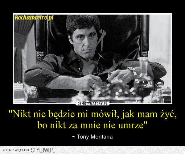 stylowi_pl_film_tony-montana_17992459.jp